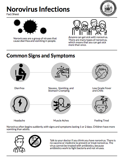 Norovirus fact sheet