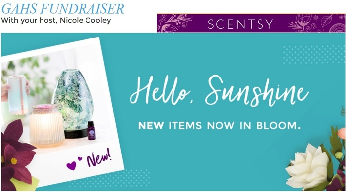 Scentsy 2018